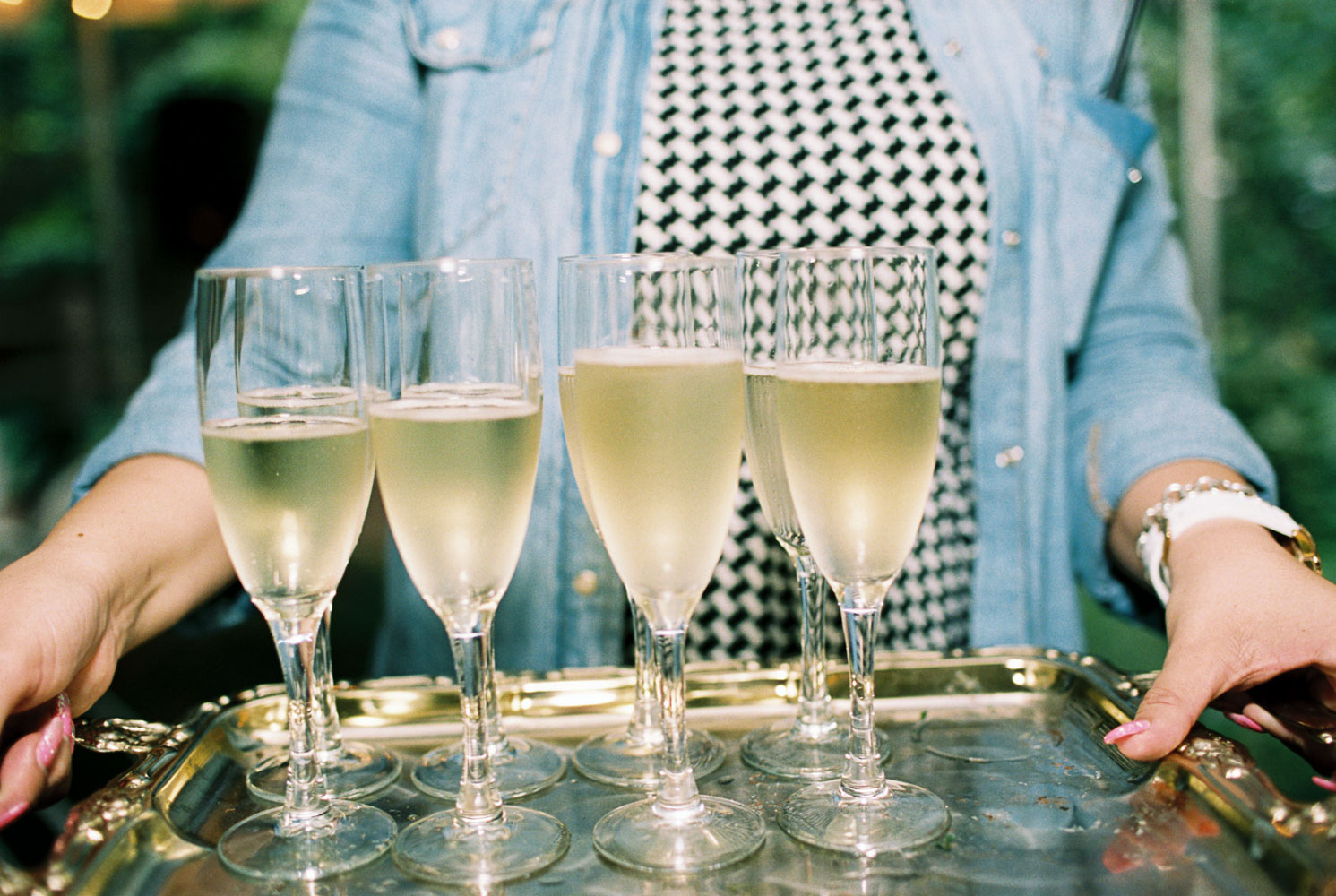 Champagne Toast at Wellspring Spa Wedding by Anna Peters Seattle Wedding Photographer