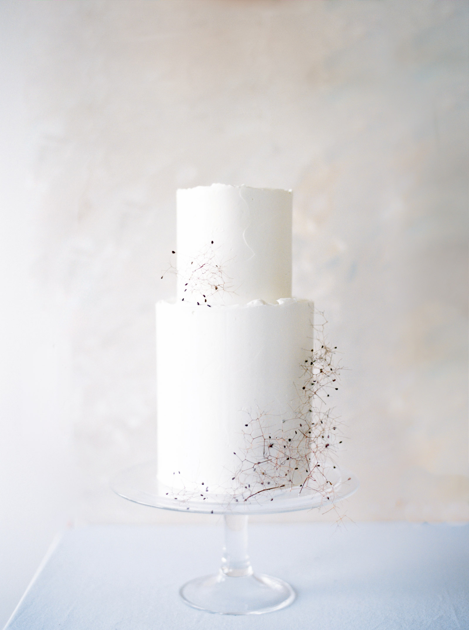 Modern and unique wedding cake captured by Seattle Wedding Photographer Anna Peters