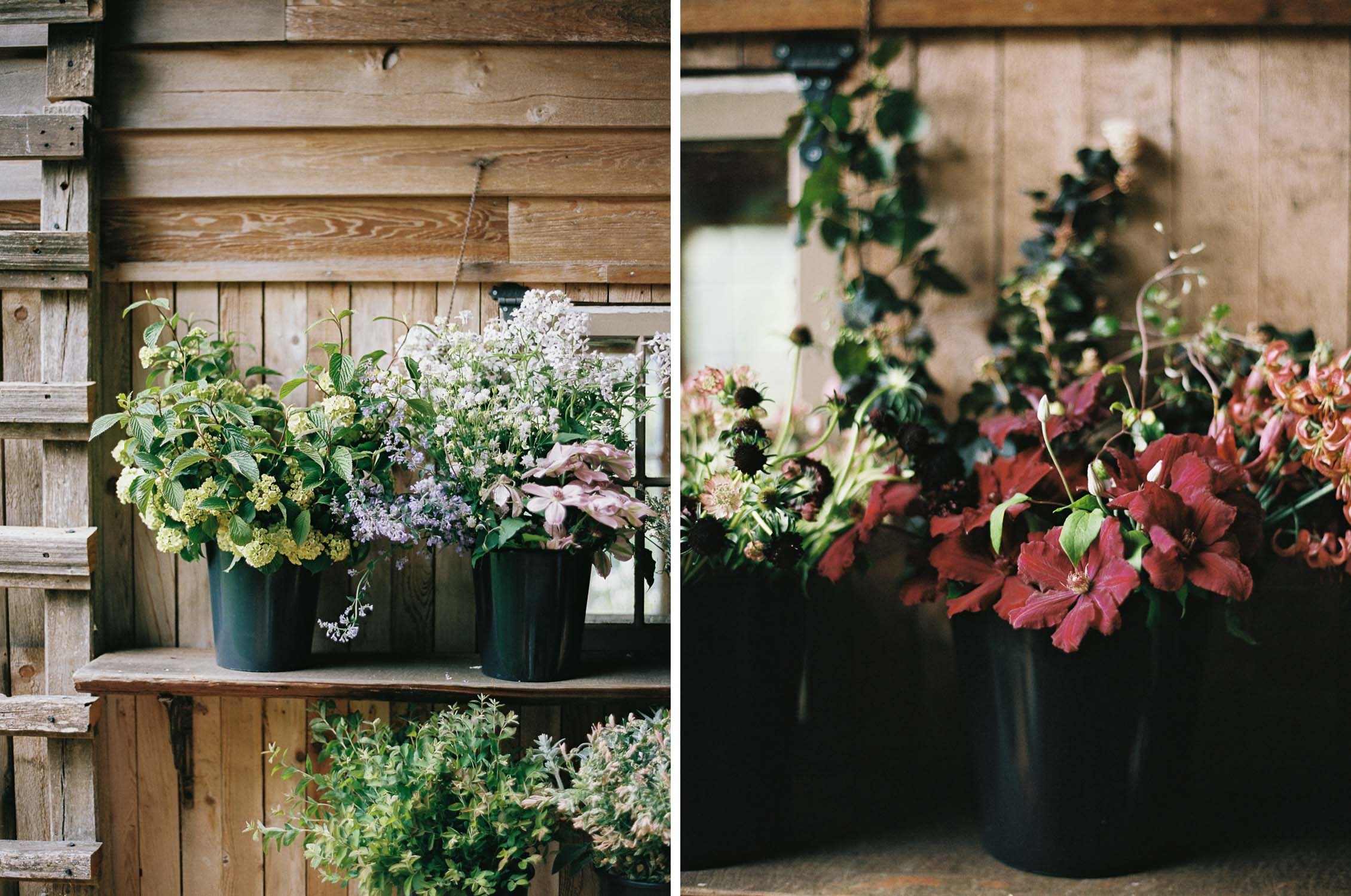 The Forage and Create Workshop captured by Seattle Wedding Photographer Anna Peters