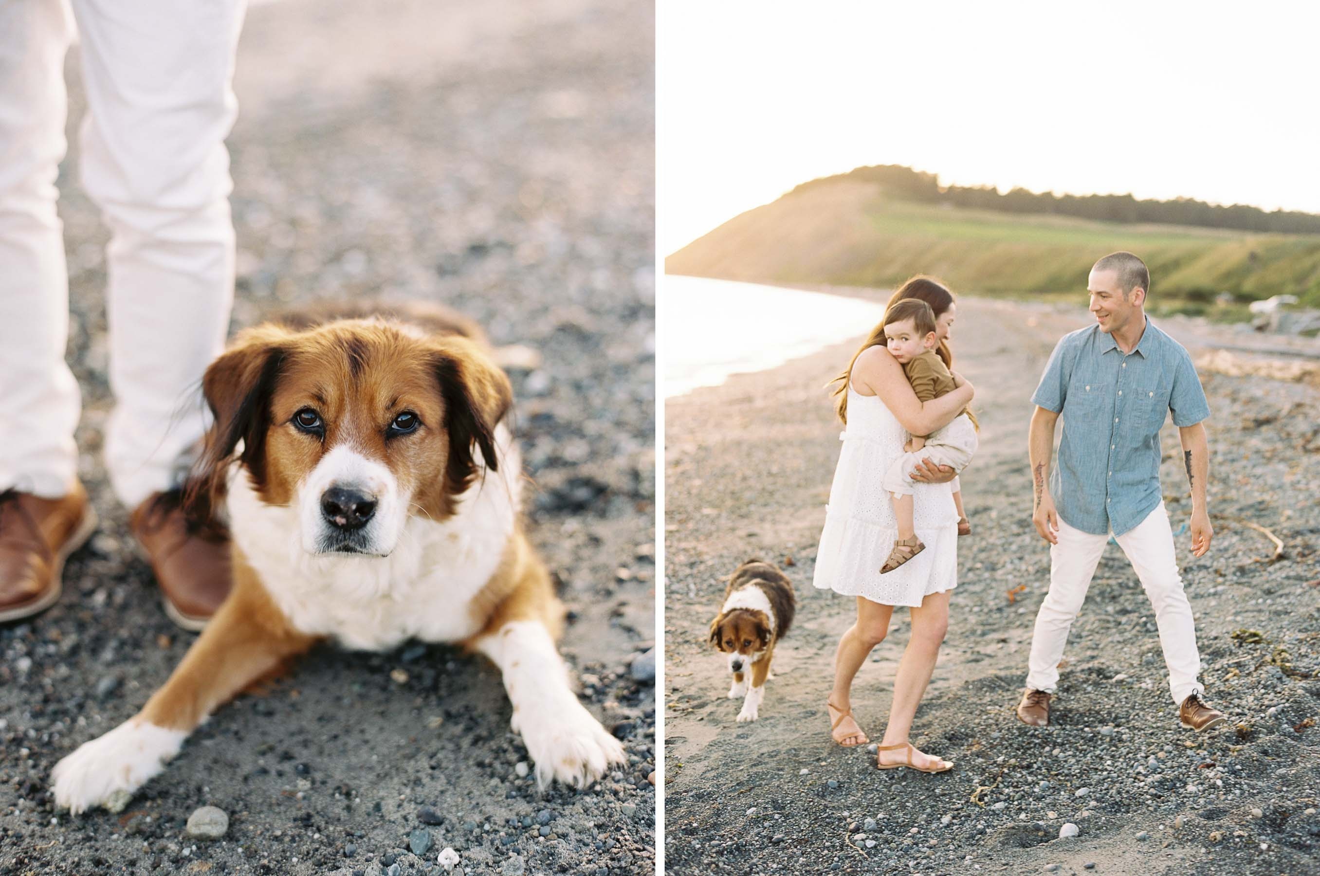 Elegant and relaxed family portraits on Whidbey Island by Seattle Wedding Photographer Anna Peters