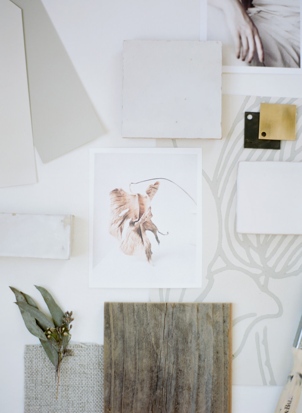 Branding and lifestyle photography for California Interior Designer Natalie Whearley